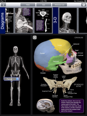 12 Awesome Anatomy Applications For Ipad