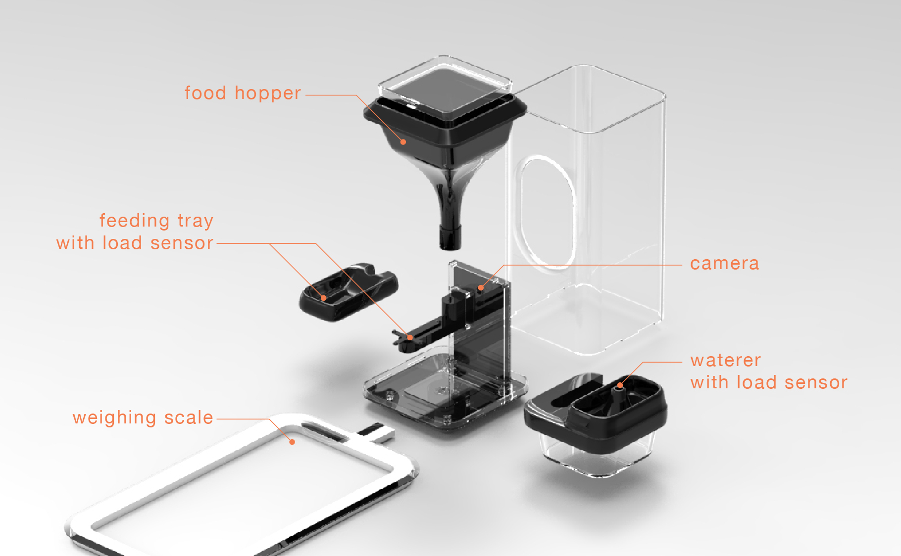 feeder feeders smart wifi pet ideas with automatic hoison best