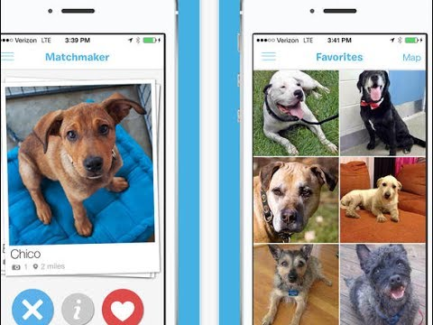 5 Dog Breed Apps For Iphone