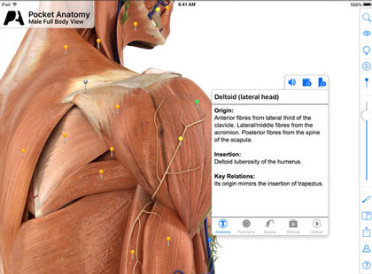 6 Interactive 3D Human Anatomy iPhone Apps -