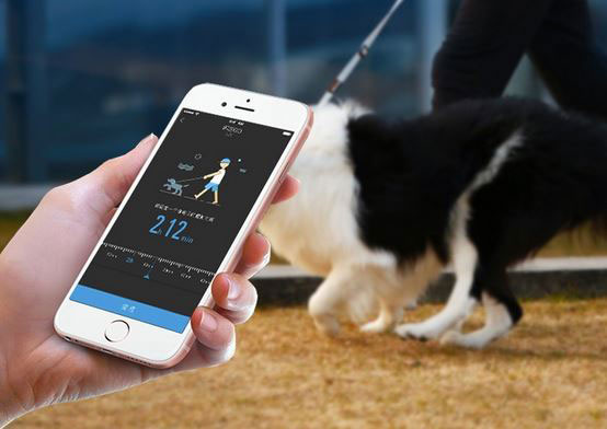 Petkit Go Dog Leash With Smartphone Notifications Light