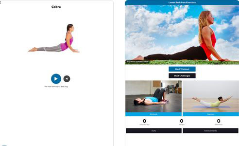 0501107d6ad97 Lower Back Pain Exercises  this back exercise app covers popular moves such  as planks